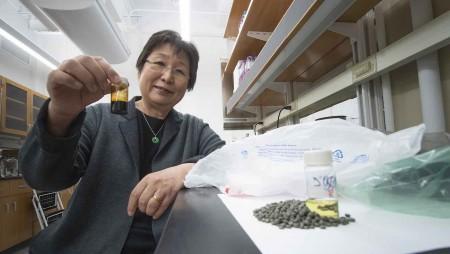 Nghiên cứu của giáo sư Wang về chất thải nhựa