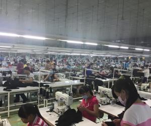 Nhiều doanh nghiệp thiếu nguyên liệu sản xuất bởi covid-19
